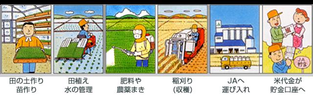 稲作農家の仕事