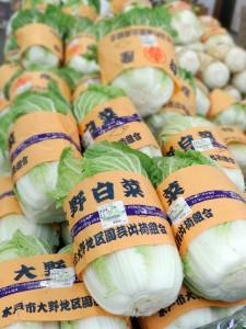 吉沼産の白菜
