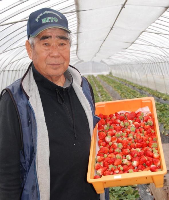 自慢のイチゴを手にする江橋部会長