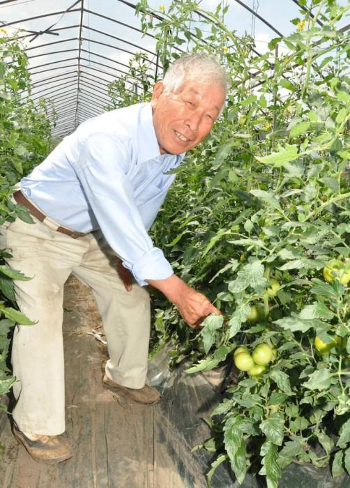 おいしいトマト作りにこだわりを見せる小林部会長