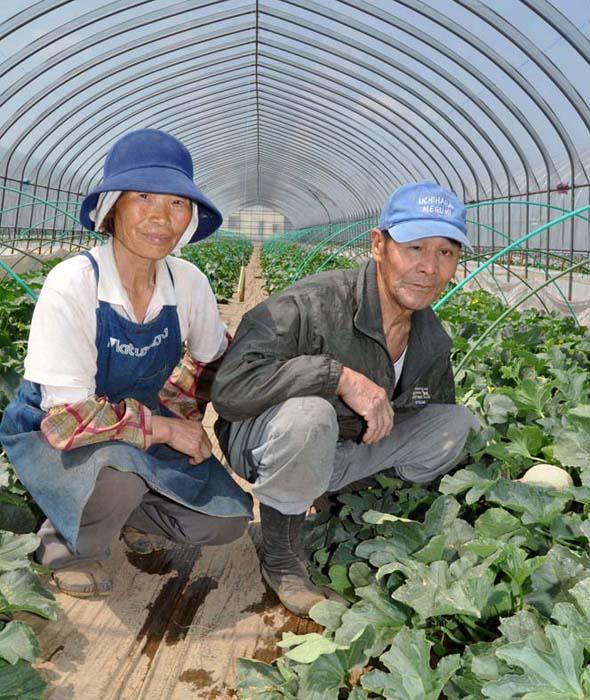 収穫前のメロンを手にする吉田さん夫妻