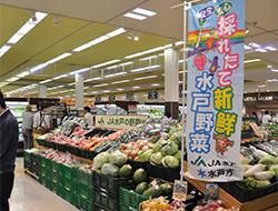 フードスクエア水戸見川店内農産物直売所