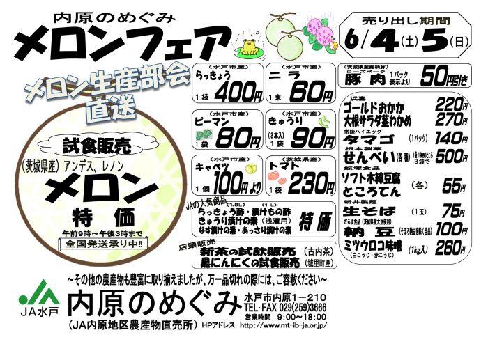 めぐみメロンチラシ-001
